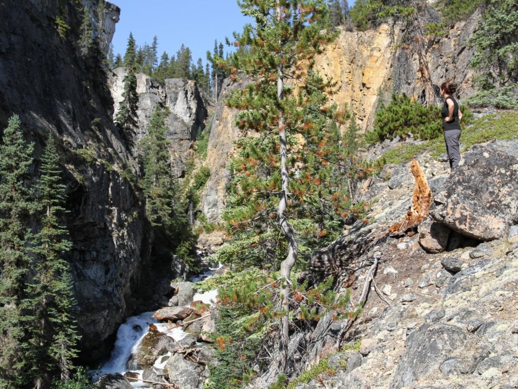 Wasserfall im Yukon