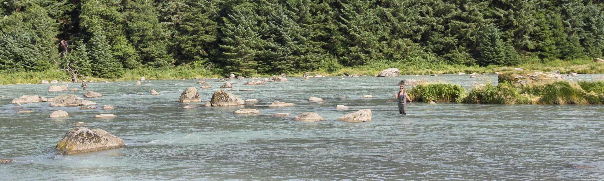 Lachsangeln im Fluß