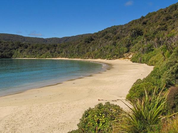 Einsamer Strand in Neuseeland