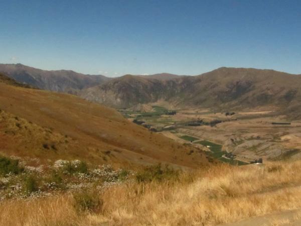 Ausgeräumte Landschaft in Neuseeland