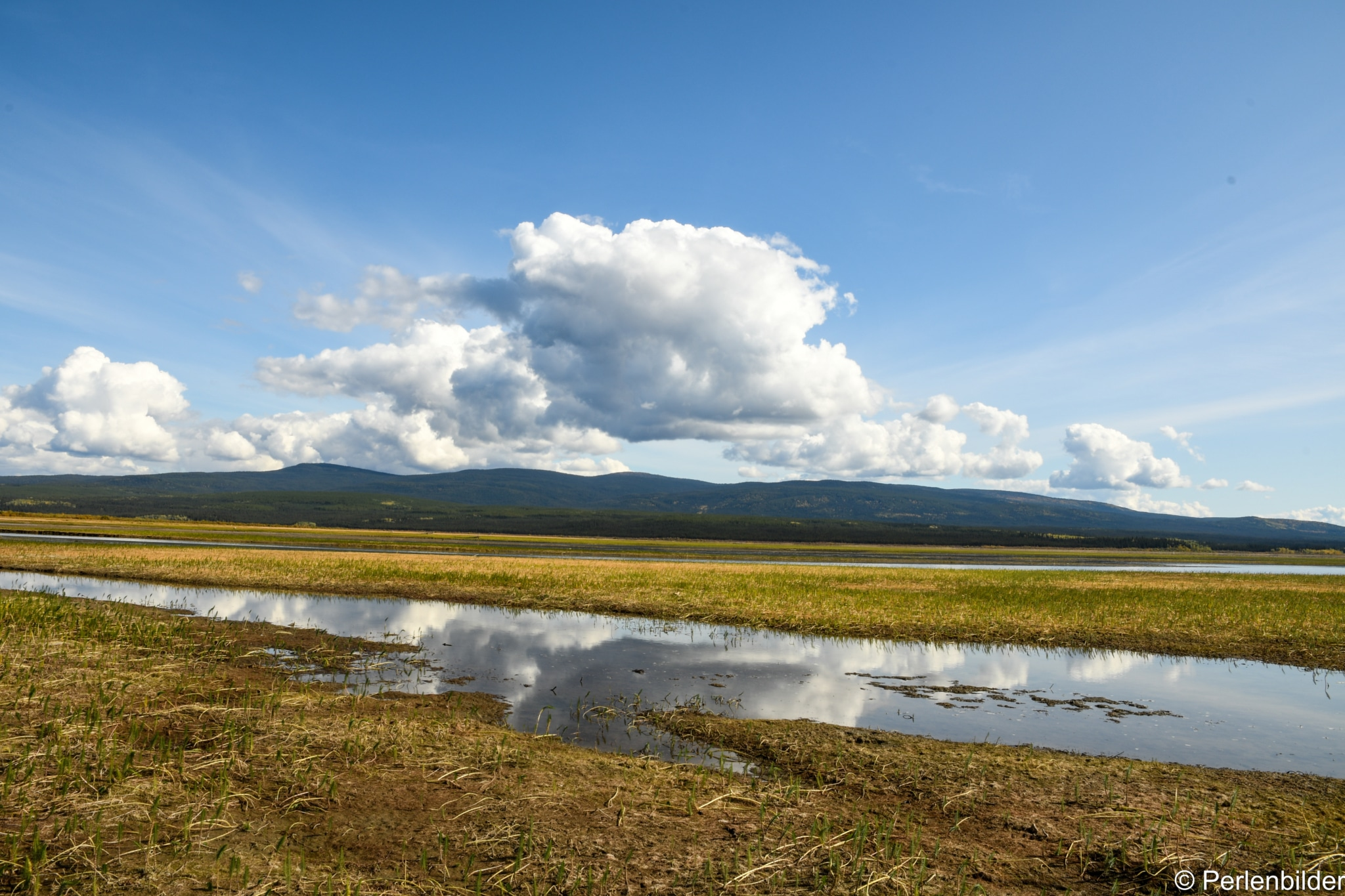 Weitläufige Landschaft: Nisutlin Bay Yukon