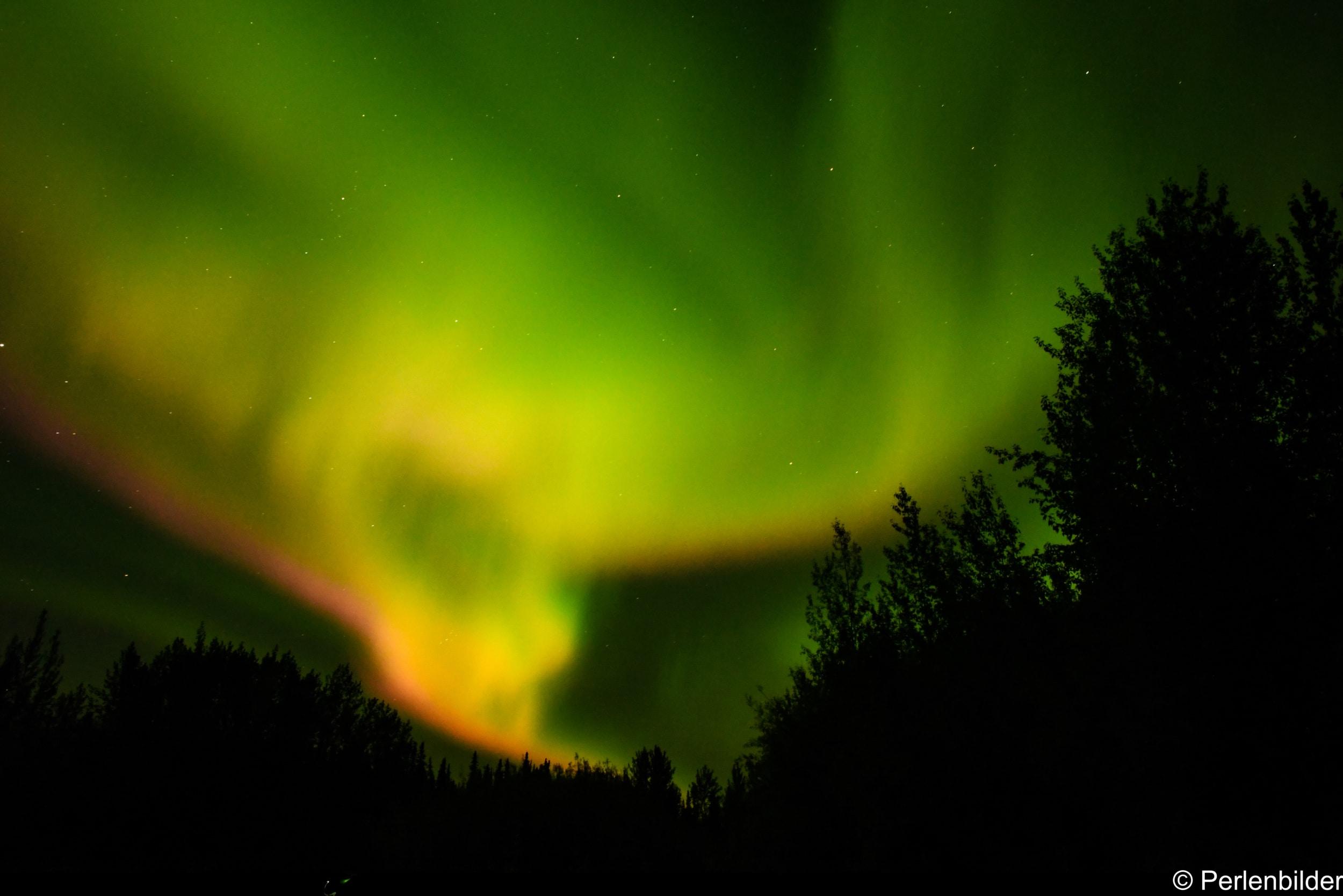 Rote und grüne Polarlichter im Yukon